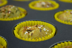 Muffin cupcake Royalty Free Stock Photos