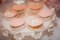 Muffin cupcakes with bow royalty free stock image