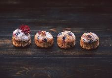 Muffin with currants on a dark background next to the berries on the branches. in a rustic style. dark style Stock Photography