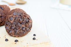 Muffin. Stock Photo