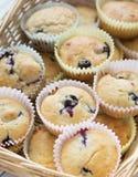 Muffin de blueberry Fotos de Stock