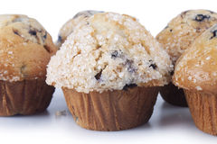 Muffin de blueberry imagens de stock royalty free