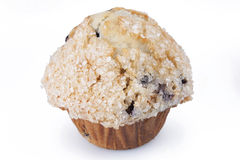 Muffin de blueberry imagem de stock