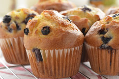 Muffin de blueberry Imagem de Stock