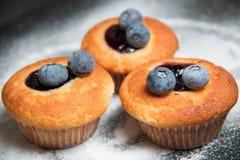 Muffin de blueberry com mirtilo imagens de stock royalty free
