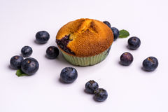 Muffin de blueberry com os mirtilos no fundo branco Fotos de Stock