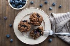 Muffin de blueberry livres sem glúten e da leiteria em uma placa foto de stock royalty free