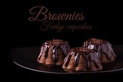 Muffin dei brownie del cioccolato Immagine Stock Libera da Diritti