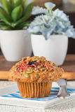 Muffin del mirtillo rosso della zucca immagini stock libere da diritti
