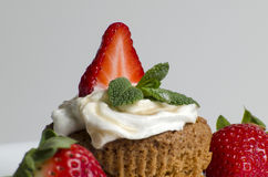 Muffin Stock Images