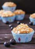 Muffin dell'avena con i mirtilli Fotografie Stock Libere da Diritti