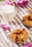 Muffin dell'avena con i mirtilli rossi Immagini Stock Libere da Diritti