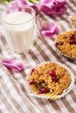 Muffin dell'avena con i mirtilli rossi Fotografie Stock Libere da Diritti