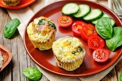 Muffin dell'uovo degli spinaci del bacon fotografia stock