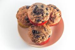 Muffin della frutta Fotografia Stock