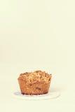 Muffin della noce e dello zucchero di palma Immagini Stock