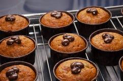 Muffin della zucca con cioccolato sullo scaffale per raffreddamento immagine stock libera da diritti