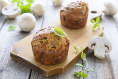 Muffin dello spuntino con i funghi ed il basilico Immagine Stock Libera da Diritti