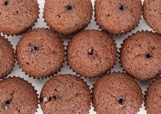 Muffin der Schokoladenkleinen kuchen Lizenzfreies Stockbild