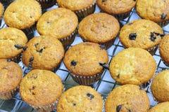Muffin di Banan Immagini Stock