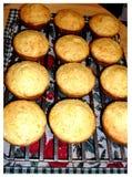 Muffin di cereale caldi immagine stock