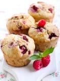 Muffin di crusca del lampone Fotografie Stock Libere da Diritti