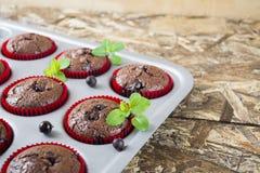 Muffin di recente al forno del cioccolato con il ribes e la menta nelle forme rosse Fotografia Stock Libera da Diritti