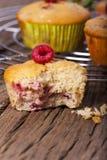 Muffin dolci della frutta immagine stock libera da diritti