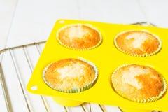 Muffin ett ögonblick sedan från den stekheta ugnen Arkivfoto