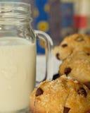 Muffin för chokladchip och mjölkar Royaltyfri Fotografi