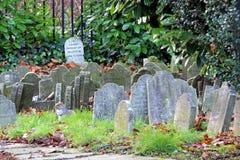 Muffin grave stone Stock Image