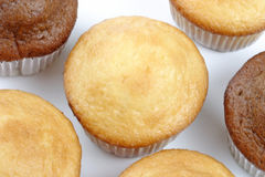 Muffin group Stock Photos