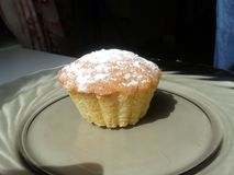 Muffin. Home made muffin on a plate Stock Photo