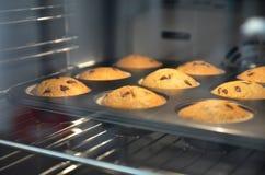 Muffin i en stekhet maträtt i ugnen öppnar Arkivfoto