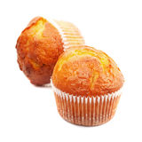 Muffin isolated Stock Images