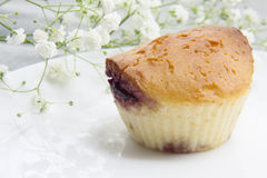 Muffin with jam Royalty Free Stock Photo