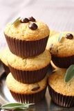 Muffin liberi del glutine casalingo delizioso con le gocce di cioccolato Immagini Stock