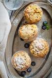 Muffin liberi della mandorla e dell'avena del glutine Fotografie Stock Libere da Diritti