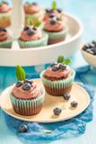 Muffin made of chocolate cream with blueberries. On blue table stock images
