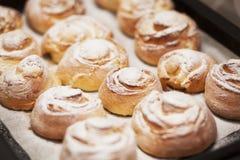 Muffin med florsocker på metallarket Royaltyfri Fotografi