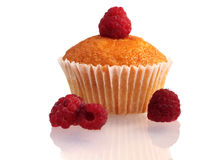 Muffin med hallon Royaltyfria Bilder