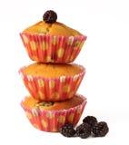 Muffin med isolerade bär Arkivbilder