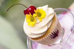 Muffin med körsbär och blomman Royaltyfri Bild