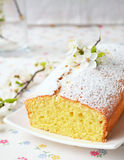 Muffin med keso Royaltyfria Bilder