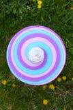 Muffin med kräm på den färgrika tabellen Arkivfoto