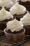 Muffin med läcker glasyr på kaka Royaltyfria Bilder