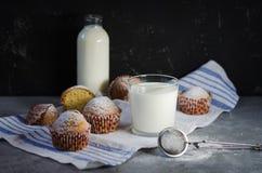 Muffin med pudrat socker arkivbild