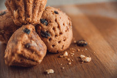 Muffin med russin på tabellen Royaltyfri Bild