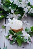 Muffin med smör lagar mat med grädde och fjädrar vita blommor Royaltyfri Bild