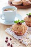 Muffin med tranbär och havremjölet Royaltyfri Bild